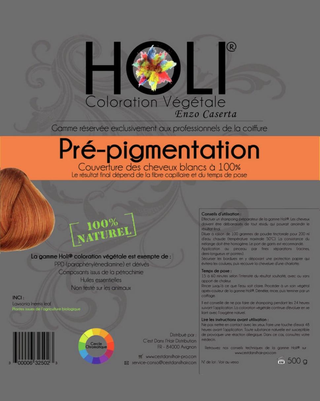 Holi Coloration Végétale Pré Pigmentation Couleur Naturelle Au